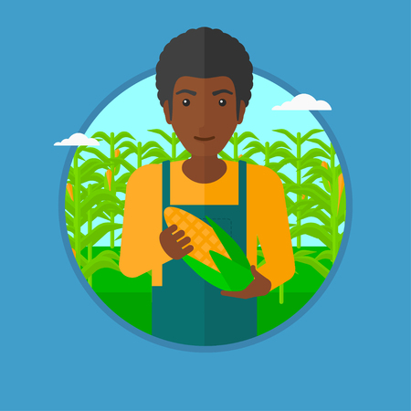 happy farmer: An african-american farmer holding a corn cob on the background of corn field. An african-american happy farmer collecting corn. Vector flat design illustration in the circle isolated on background. Illustration