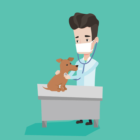 stetoscope: Young male veterinarian examining dog in hospital. Veterinarian checking heartbeat of a dog with stetoscope. Concept of medicine and pet care. Vector flat design illustration. Square layout. Illustration