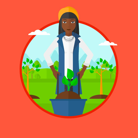 planted: An african woman pushing wheelbarrow with plant and dirt in park. Gardener with wheelbarrow on a background of newly planted trees. Vector flat design illustration in the circle isolated on background Illustration