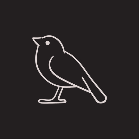 tweet icon: Bird vector sketch icon isolated on background. Hand drawn Bird icon. Bird sketch icon for infographic, website or app. Illustration