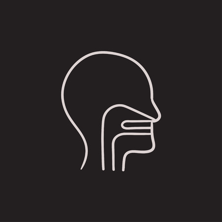 throat: Head with ear, nose, throat system vector sketch icon isolated on background. Hand drawn head with ear, nose, throat system icon. Head with ear, nose, throat icon for infographic, website or app.