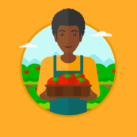 garden landscape: An african-american farmer holding a box with tomatoes. Happy farmer standing on the background of field with bushes of tomatoes. Vector flat design illustration in the circle isolated on background. Illustration