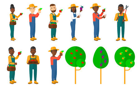 agricultural tools: Set of farmers collecting harvest. Farmers using agricultural tools. Farmer with pruner, watering can. Garden trees. Beekeeper working at apiary. Vector illustration isolated on white background.