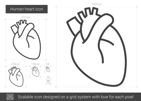 aortic bodies: Human heart vector line icon isolated on white background. Human heart line icon for infographic, website or app. Scalable icon designed on a grid system. Illustration