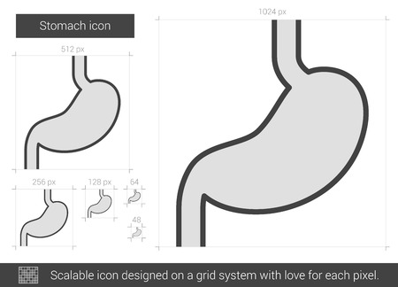 chronic gastritis: Stomach vector line icon isolated on white background. Stomach line icon for infographic, website or app. Scalable icon designed on a grid system.