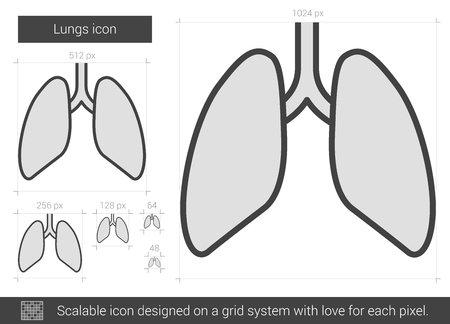 alveolus: Lungs vector line icon isolated on white background. Lungs line icon for infographic, website or app. Scalable icon designed on a grid system.