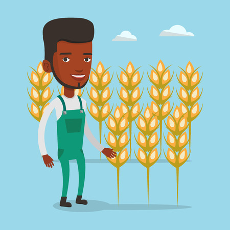 happy farmer: An african-american happy farmer standing on the background of wheat field. Smiling man working in wheat field. Farmer inspecting quality of wheat. Vector flat design illustration. Square layout.