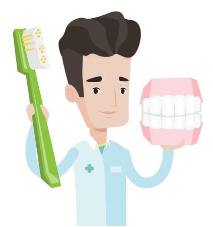 Jeune dentiste sympathique tenant modèle de mâchoire dentaire et une brosse à dents dans les mains. dentiste caucasien, mâle, montrant le modèle de la mâchoire dentaire et brosse à dents. Vector design plat illustration isolé sur fond blanc. Banque d'images - 66185908