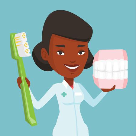 Dentiste avec modèle dentaire dentaire et brosse à dents. Banque d'images - 69192585