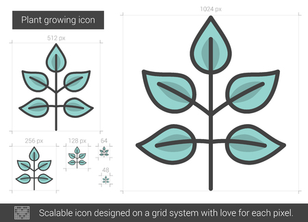 Plant growing line icon. Illustration