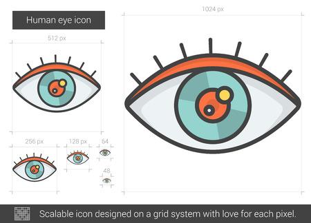 human eye: Human eye line icon.