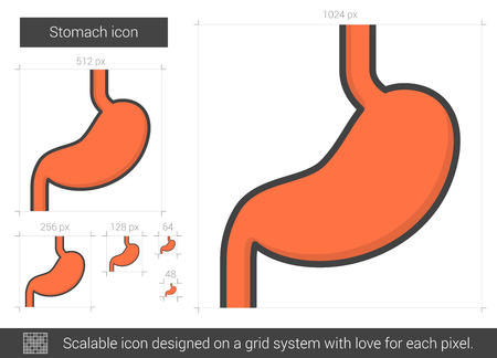Stomach line icon.