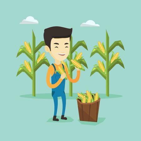 Farmer collecting corn vector illustration.
