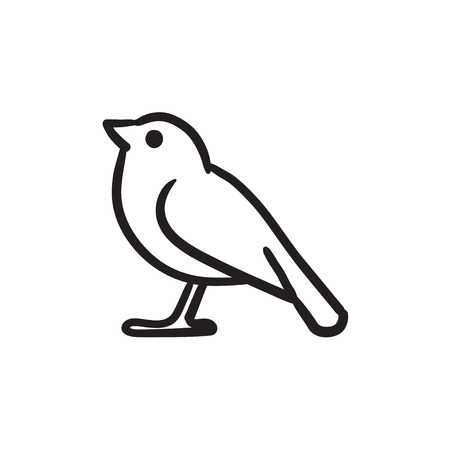 Bird sketch icon.