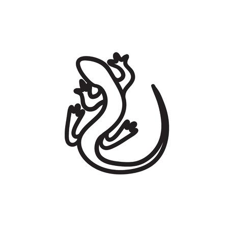 chamaeleo: Lizard sketch icon.