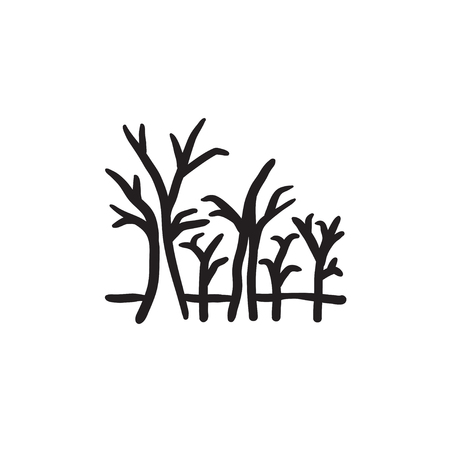 Tree with bare branches vector sketch icon isolated on background. Hand drawn Tree with bare branches icon. Tree with bare branches sketch icon for infographic, website or app. Illustration
