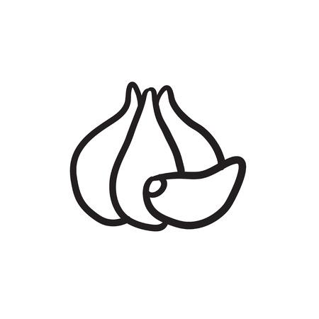 Garlic  vector sketch icon isolated on background. Hand drawn Garlic  icon. Garlic  sketch icon for infographic, website or app.