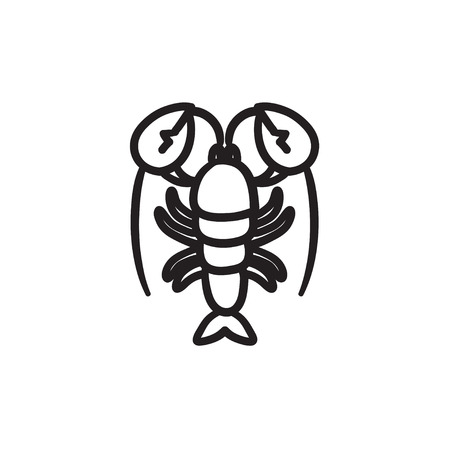 pincers: Lobster vector sketch icon isolated on background. Hand drawn Lobster icon. Lobster sketch icon for infographic, website or app.