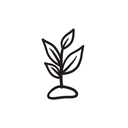 Sprout sketch icon.