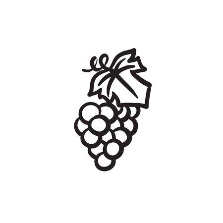 Grape sketch icon. Ilustracja
