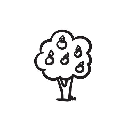 Fruit tree sketch icon.