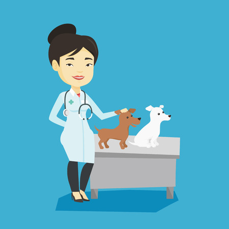 Young asian veterinarian with stethoscope examining dogs in hospital. Veterinarian doctor with dogs at vet clinic. Concept of medicine and pet care. Vector flat design illustration. Square layout.