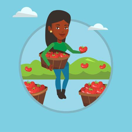 picker: Farmer collecting tomatos vector illustration.