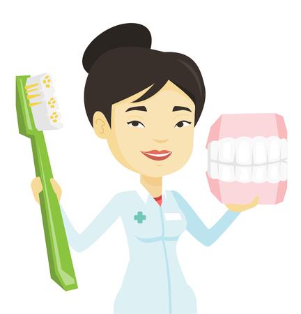 Dentiste avec modèle dentaire dentaire et brosse à dents. Banque d'images - 76267935
