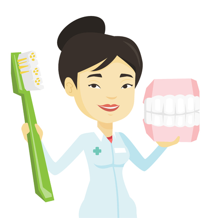 Dentist with dental jaw model and toothbrush. Illustration