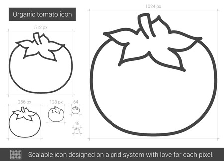 Organic tomato vector line icon isolated on white background. Organic tomato line icon for infographic, website or app. Scalable icon designed on a grid system. Illustration