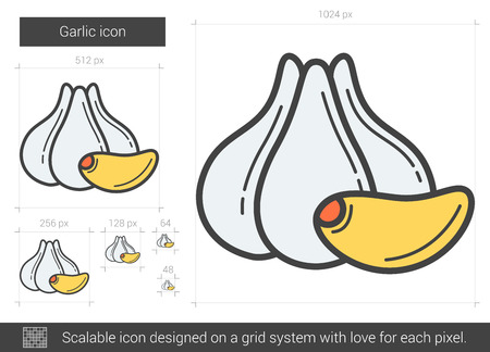 Garlic line icon. Vector illustration. Illustration