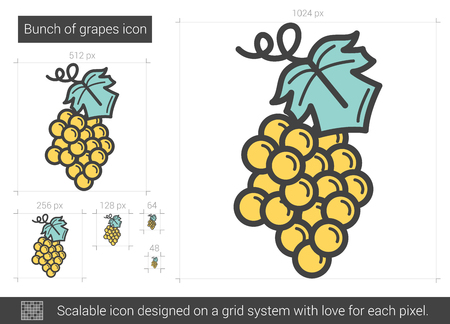Bunch of grapes line icon. Vector illustration.