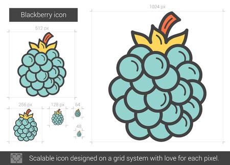 Blackberry line icon. Vector illustration.