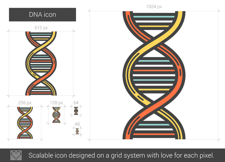 DNA line icon. Vector illustration.