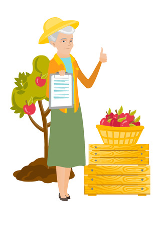 Senior caucasian farmer holding clipboard with papers and giving thumb up on the background of tree, crates and basket of apples. Vector flat design illustration isolated on white background. Illustration