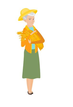 Senior caucasian female farmer holding hay in hands. Full length of happy female farmer with hay in hands. Farmer carrying hay. Vector flat design illustration isolated on white background.