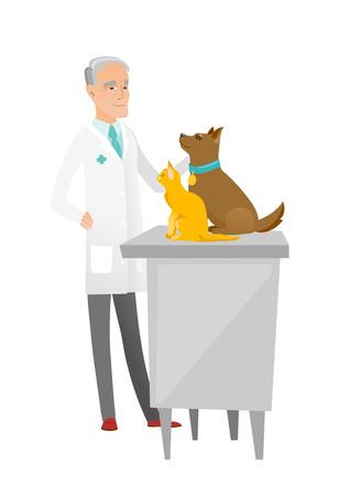 Senior caucasian veterinarian examining pets. Ilustração