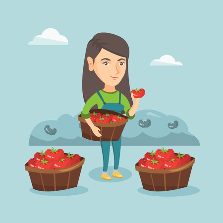 Caucasian farmer holding basket with tomatoes. Farmer showing ripe red tomato on the background of field with bushes of tomatoes. Farmer collecting tomatoes. Vector cartoon illustration. Square layout