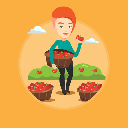 Caucasian farmer holding basket with tomatoes. Farmer showing ripe red tomato on the background of field with bushes of tomatoes. Vector flat design illustration in the circle isolated on background. Illustration