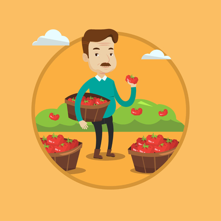 An adult farmer holding basket with tomatoes. Farmer showing ripe red tomato on the background of field with bushes of tomatoes. Vector flat design illustration in the circle isolated on background. Illustration