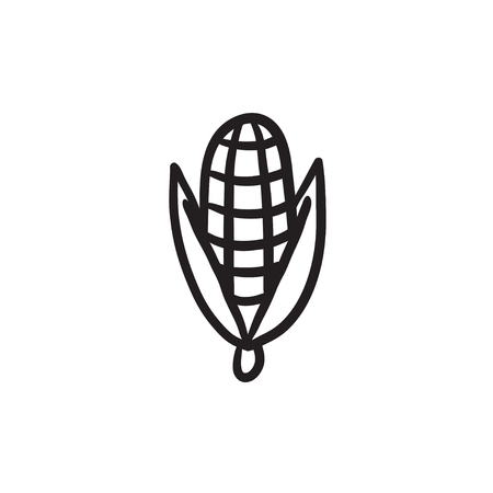 ration: Corn vector sketch icon isolated on background. Hand drawn Corn icon. Corn sketch icon for infographic, website or app.