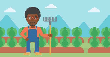 An african-american man standing with a rake on the background of cabbage field vector flat design illustration. Horizontal layout.