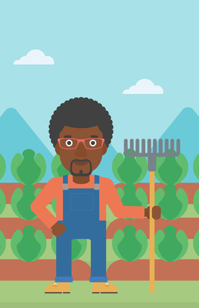 An african-american man standing with a rake on the background of cabbage field vector flat design illustration. Vertical layout.