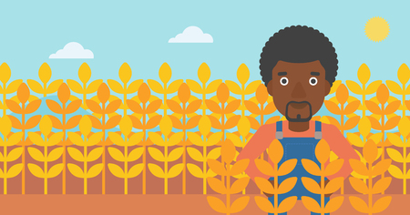 An african-american man standing in a wheat field vector flat design illustration. Horizontal layout.