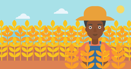 An african-american woman standing in a wheat field vector flat design illustration. Horizontal layout. Illustration