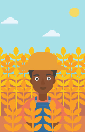An african-american woman standing in a wheat field vector flat design illustration. Vertical layout.