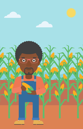 An african-american man holding a corn cob on the background of field vector flat design illustration. Vertical layout.
