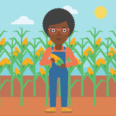 An african-american woman with holding a corn cob on the background of field vector flat design illustration. Square layout.