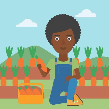 Una donna afro-americana raccolta carote nel carrello sullo sfondo di design piatto illustrazione vettoriale campo. Layout quadrato