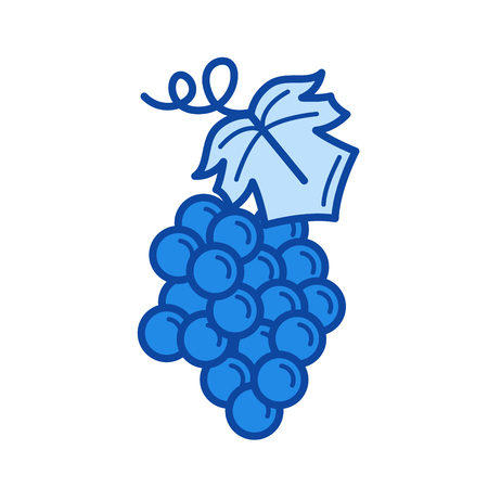 Bunch of grapes vector line icon isolated on white background. Blue icon designed on a grid system. Illustration